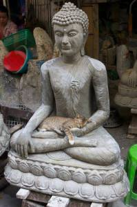 buddha and kitty