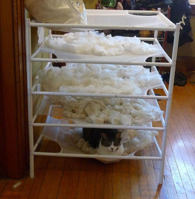 cat bed or fleece drying