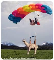 llama paraglider
