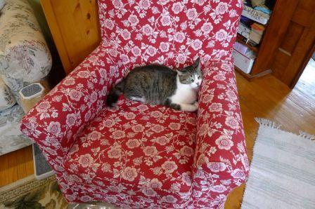 MY chair...MINE