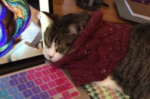 office help w cowl