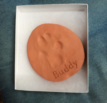 Buddy pawprint 1