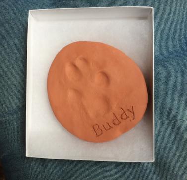 Buddy pawprint 1
