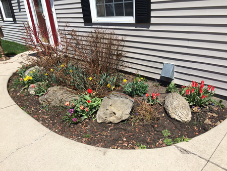 front flowerbed spring