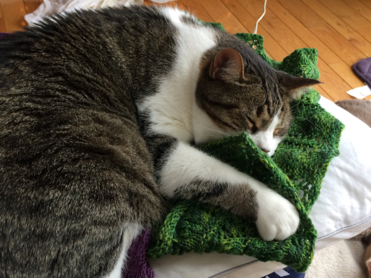 Tim-knitting is to sleep on